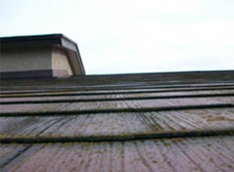 屋根は汚れが目立ち、傷んでしまっています。