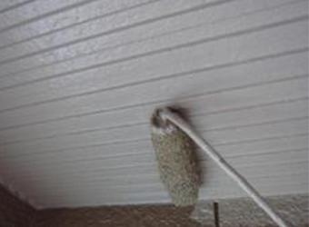 軒天の中・上塗りの様子です。エスケー化研のクリーンマイルドシリコンを使用しています。