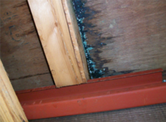 雨漏りをしていた箇所です。木材の傷みが激しく見られます。